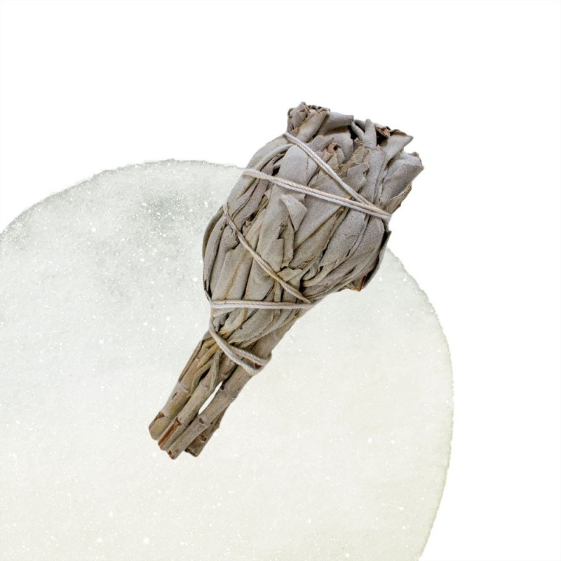 Native Smudge - White Sage
